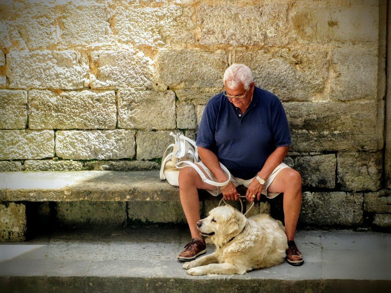 Besoins spéciaux pour les animaux de compagnie âgés