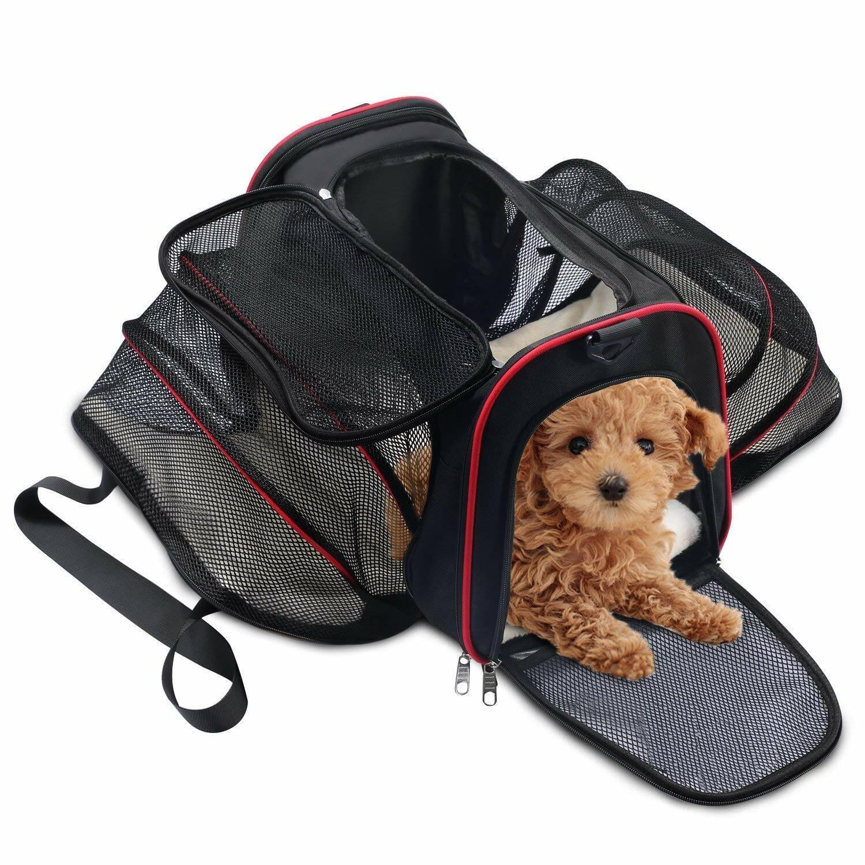 Comment choisir un sac de transport pour chien