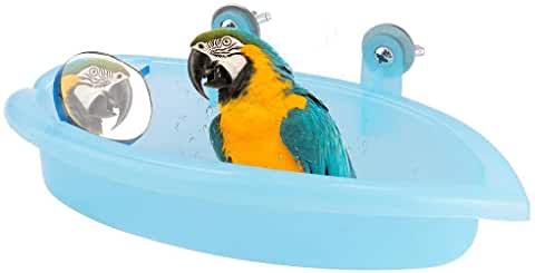 meilleure baignoire perroquet