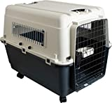cage transport avion chien