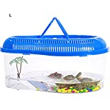 cage transport tortue