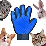 gant à poils animaux